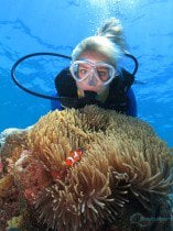 certified diving great barrier reef