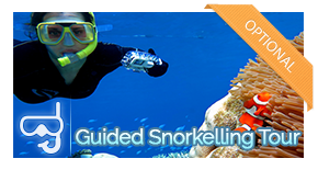 guided-activity-snorkel