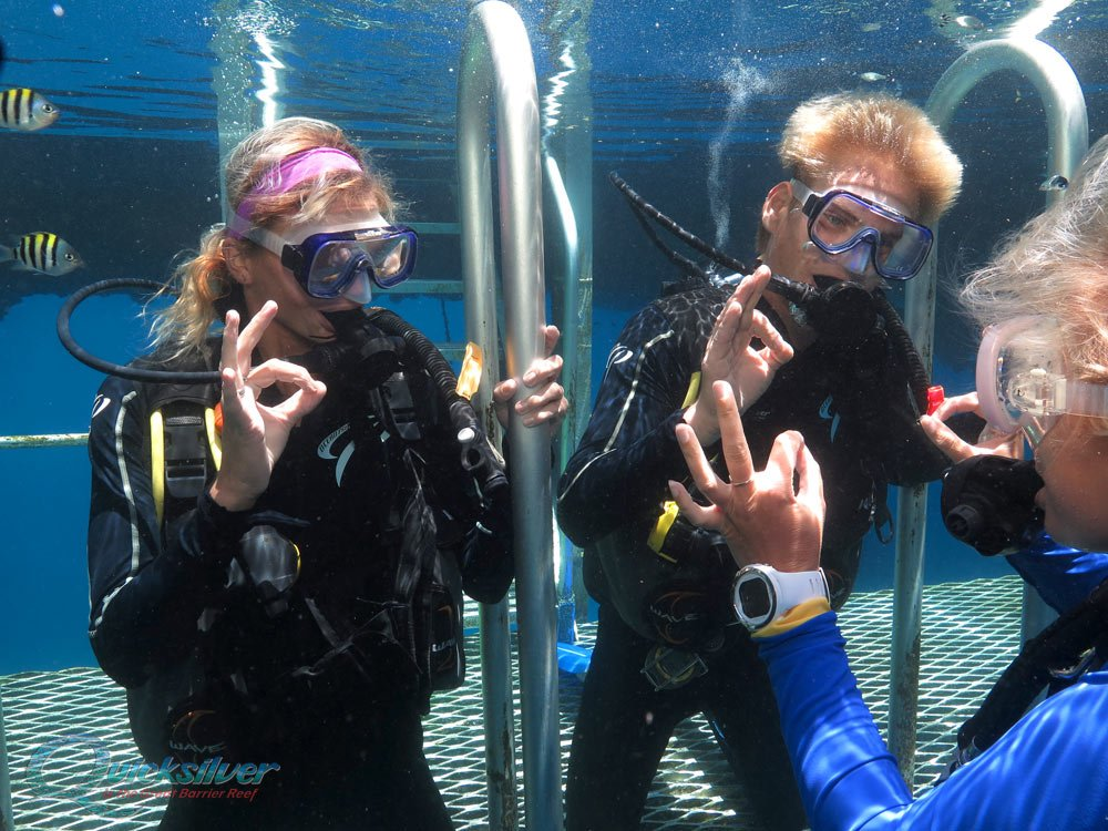 Diving On The Great Barrier Reef Scuba Dive Cairns And