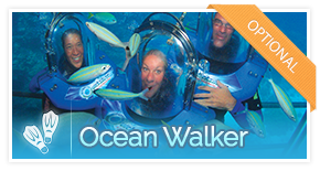 optional-activity-oceanwalker