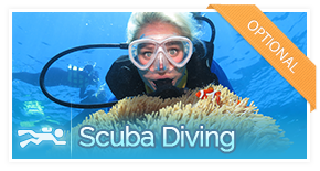 optional-activity-scuba