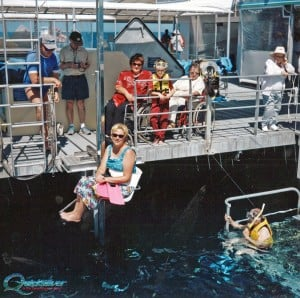 outer-barrier-reef-pontoon-platform-chair-lift-disabled