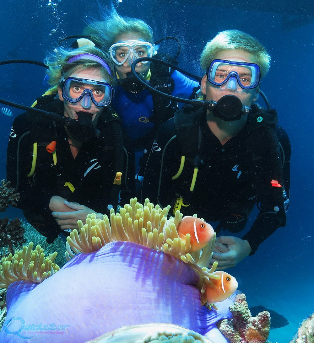 Great barrier reef tour quicksilver cruises - Dive great barrier reef ...