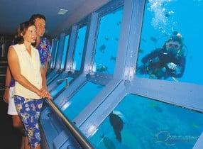Great Barrier Reef Underwater Observatory