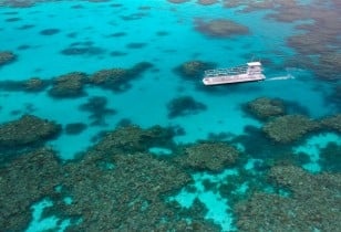 Quicksilver Cruises Semi-sub Great Barrier Reef