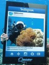 Clownfish Scuba diver Great Barrier Reef