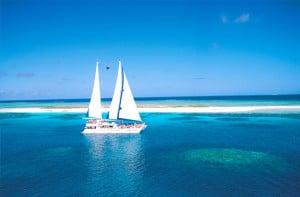 ocean spirit michaelmas cay tour